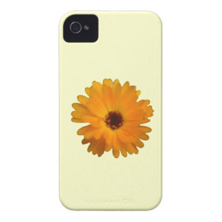 Orange Marigold Blackberry Bold Case