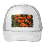 Orange Marigold Flowers  Baseball Hat