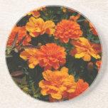 Orange Marigold Flowers Coaster