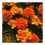 Orange Marigold Flowers Invitations