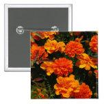 Orange Marigold Flowers  Pin