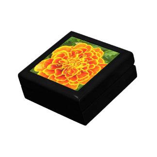 Orange Marigold  Gift Box