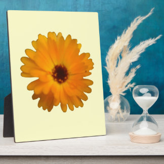 Orange Marigold Plaque