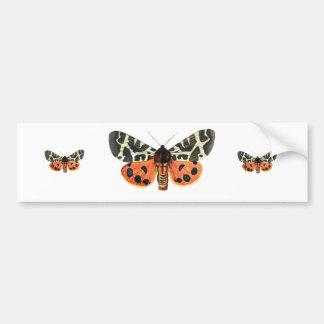 orange moth bumper sticker