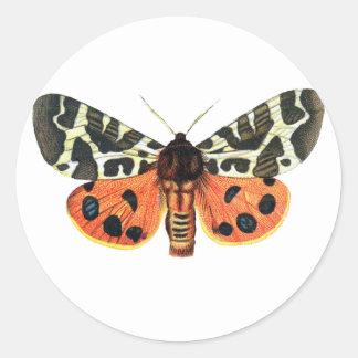 orange moth round sticker