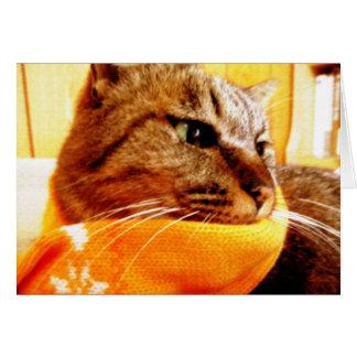 Orange muffler Chad Card