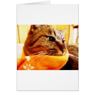 Orange muffler Chad Greeting Card
