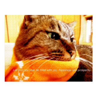 Orange muffler Chad (message attachment of the end Postcard