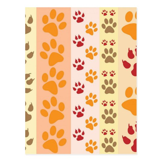 Orange Multicolored Cat Paw Print Pattern Postcard