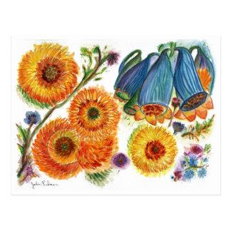 Orange Mum 78 Postcard