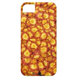 Orange Mums iPhone 5 Covers