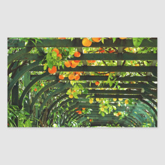 Orange Oranges and Yellow Lemons on Green Trellis Rectangular Sticker