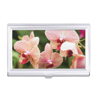 Orange Orchid Hybrid, South Africa Business Card Holder