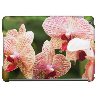Orange Orchid Hybrid, South Africa iPad Air Cover