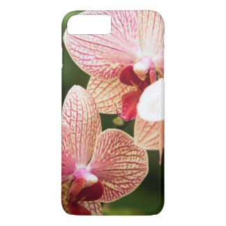 Orange Orchid Hybrid, South Africa iPhone 8 Plus/7 Plus Case