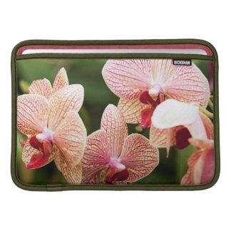 Orange Orchid Hybrid, South Africa MacBook Air Sleeves