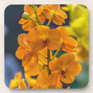 Orange orchids hard plastic coasters