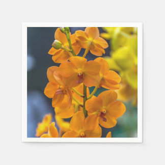 Orange orchids paper serviettes