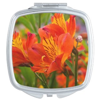 Orange Peruvian Lily Compact Mirror