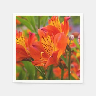 Orange Peruvian Lily Paper Napkins