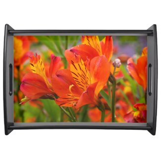 Orange Peruvian Lily Serving Tray