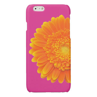 orange petals iPhone 6 plus case