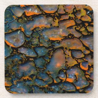 Orange Petrified dinosaur bone Coaster