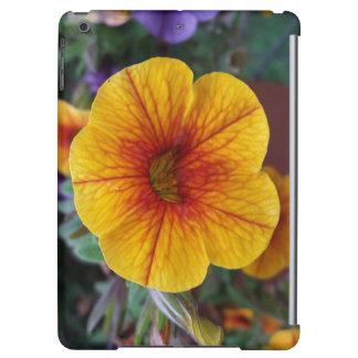 Orange Petunia