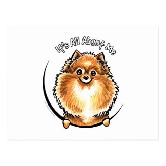 Orange Pomeranian IAAM Postcard
