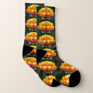 Orange Pop Art Cactus Bloom Unisex Socks