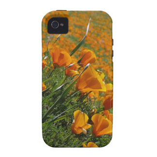 Orange Poppies Blowing In The Wind iPhone 4/4S Case