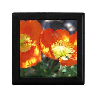 Orange Poppies Small Square Gift Box