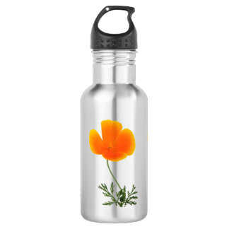 orange poppy 532 ml water bottle