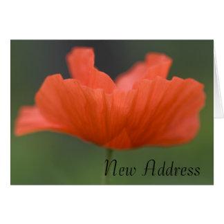 Orange Poppy Change of Address Card