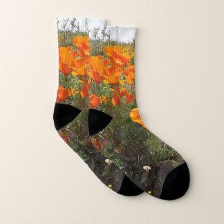 Orange Poppy Field of Flowers 1