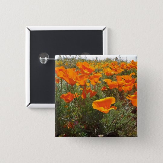 Orange Poppy Field of Flowers 15 Cm Square
