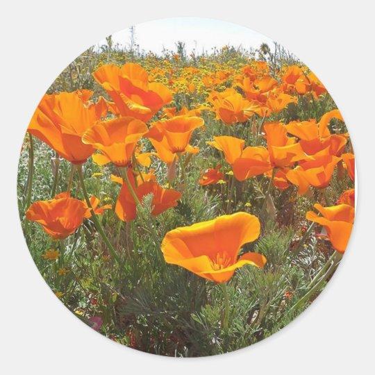 Orange Poppy Field of Flowers Classic Round Sticker