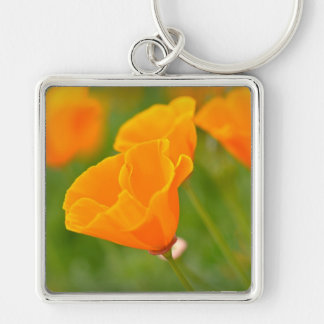 Orange Poppy Macro Flower Key Ring
