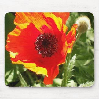 Orange Poppy Mousepad