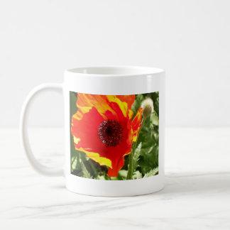 Orange Poppy Mug