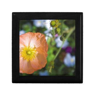 Orange Poppy Small Square Gift Box