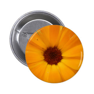 Orange Rain Daisy Button