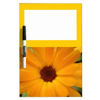 Orange Rain Daisy Memo Board