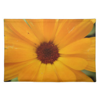Orange Rain Daisy Placemat