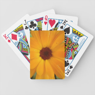 Orange Rain Daisy Playing Cards