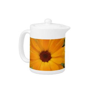 Orange Rain Daisy Teapot