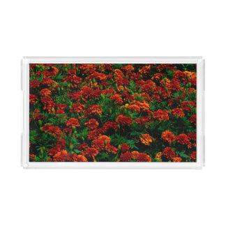 Orange Red Flower Landscape Acrylic Tray
