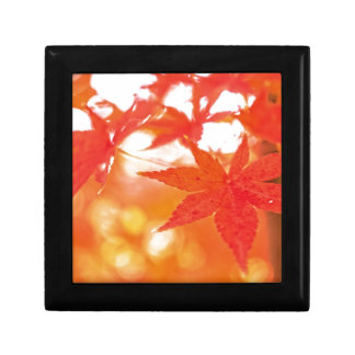 Orange Red Maple Leaves Jewelry Boxes