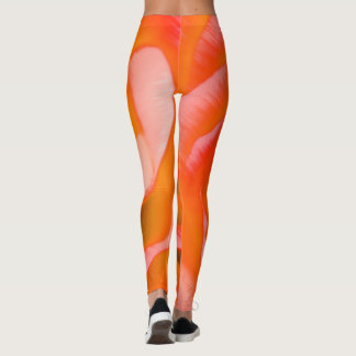 Orange Red Rose Flower Close-up Leggings