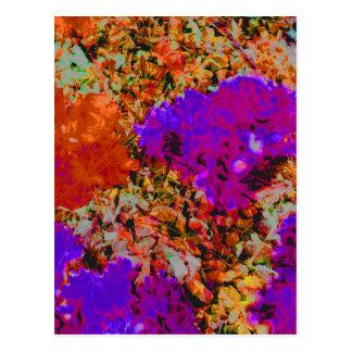 orange rock2.jpg postcard